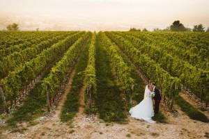 tour enogastronomico Venezia - Marryville-wed in colour